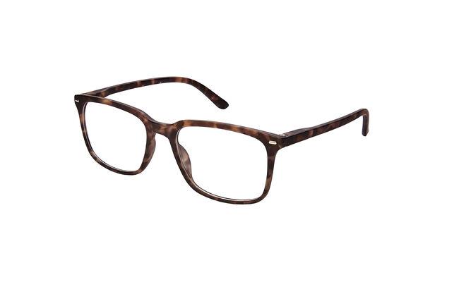 Farline Gafas de Presbicia Habana Marrón 1, 1 Ud